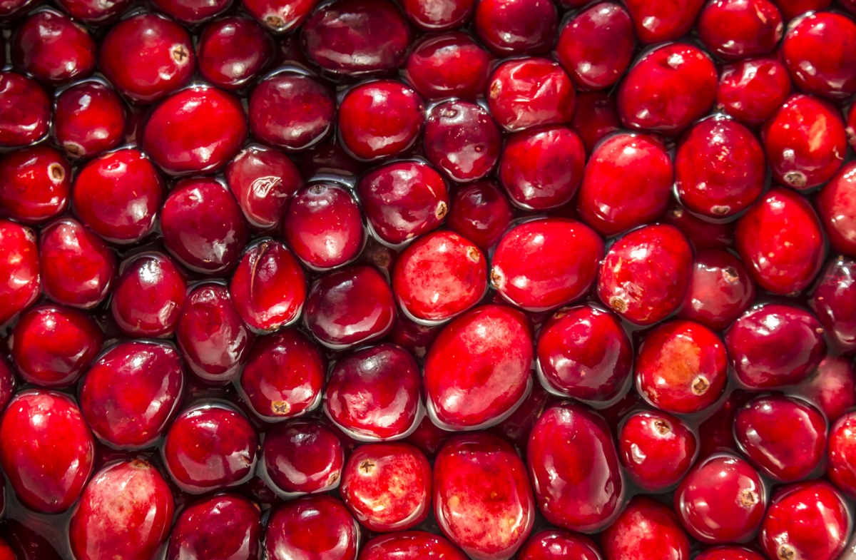 the cranberry industry is wild also we have too many cranberries