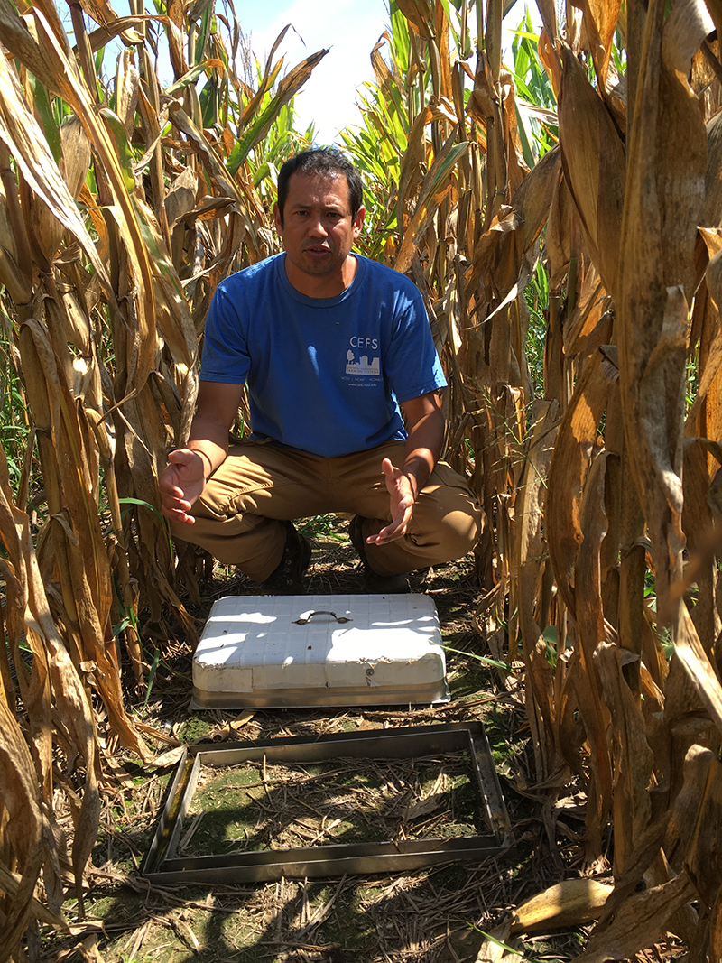 The Strange Horrifying History Of Cherry Research Farm In North Carolina Modern Farmer