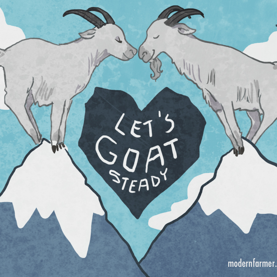 """let's goat steady"" - free valentine's day e-card for farmers"