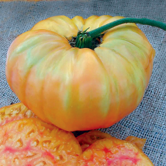 HEIRLOOM-TOMATO-pineapple
