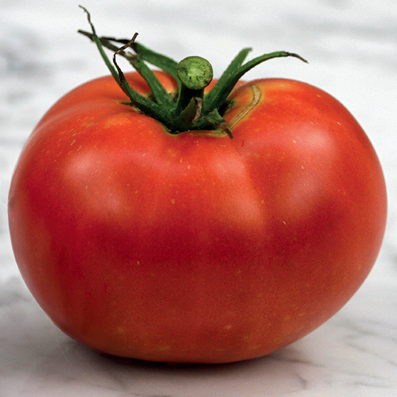 HEIRLOOM-TOMATO-rose-de-berne