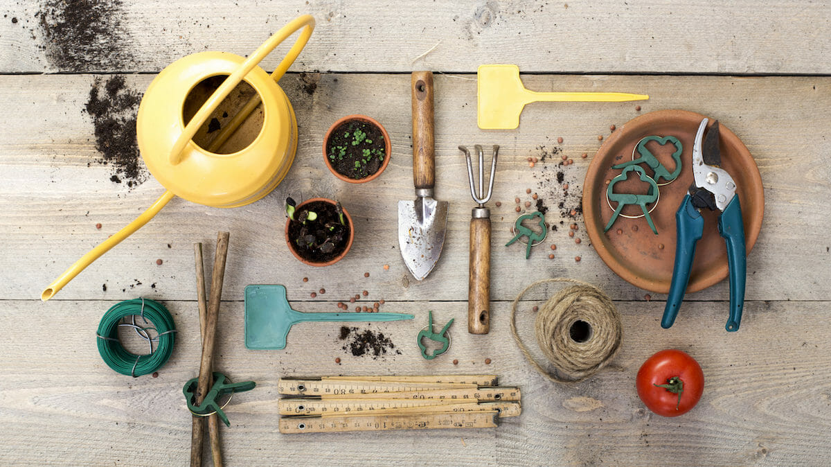 6 Specialty Gardening Tools To Try This