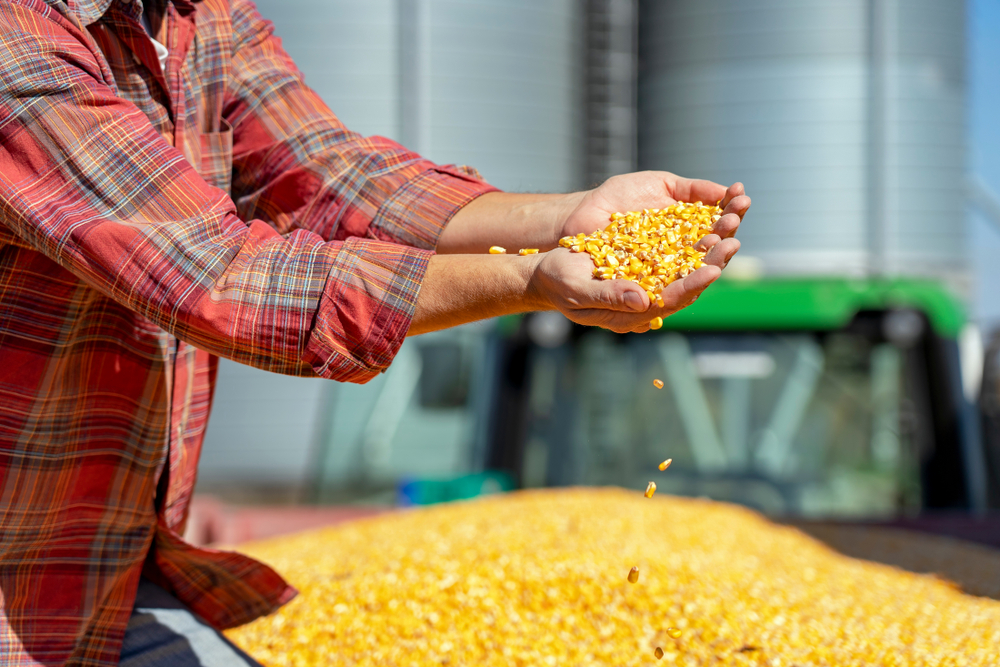 Farm Groups Respond (Not Well) to the Trump Administration's Ethanol Plan