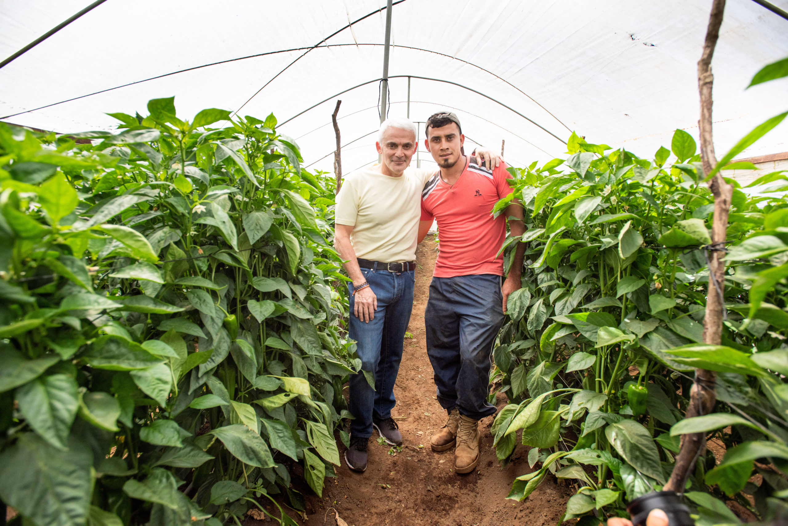 Helping Salvadoran Farmers Through Social Enterprise