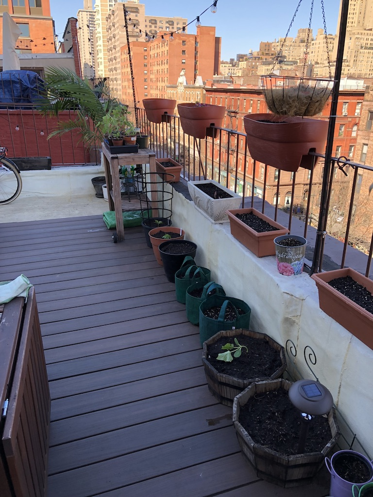 How to Build an Urban Rooftop Garden