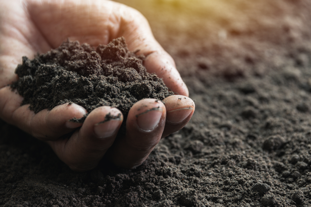 The (Political) Fight Over Healthy Soil